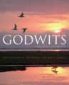 Godwits: Long Haul Champions