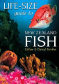 Life-size Guide to New Zealand Fish