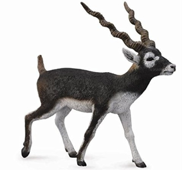 CollectA Wildlife Springbok Toy Figure Authentic Hand Painted Model